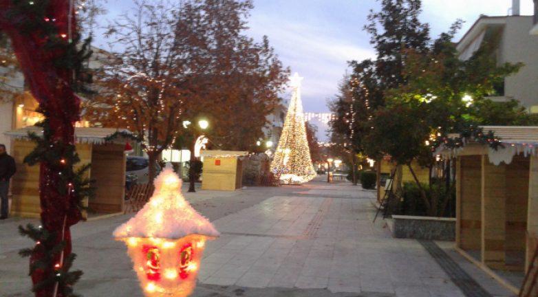 Φωταγωγείται το Χριστουγεννιάτικο δέντρο του Δήμου Ρήγα Φεραίου