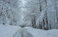 Νέα χιονόπτωση στα ορεινά του Πηλίου