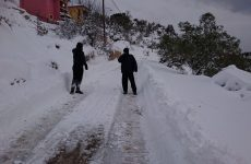 Τις πληγές τους από την επέλαση του χιονιά μετρούν οι κάτοικοι της  Αλοννήσου