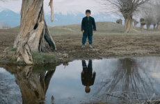 Προβολή της ταινίας «το αρνάκι»
