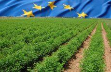 Δημόσια διαβούλευση για το μέλλον της Κοινής Γεωργικής Πολιτικής