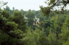 Γιώργος Δημαράς: να σταματήσει η αυθαιρεσία εις βάρος των δασών