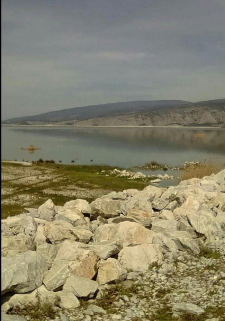 Επιχειρησιακά μέτρα για την προστασία της ορνιθοπανίδας της λίμνης Κάρλας