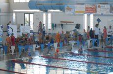 Μεγάλη επιτυχία για το τμήμα κολύμβησης της Νίκης Βόλου