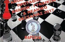 Πανελλήνια ατομικά νεανικά πρωταθλήματα 2017 κατηγοριών  K08 – K18