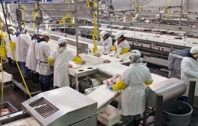 Εγκύκλιος ΕΦΕΤ για υποχρεωτική  εκπαίδευση-κατάρτιση  προσωπικού επιχειρήσεων τροφίμων