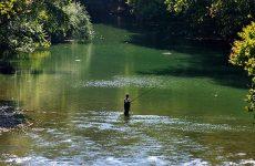 Απαγόρευση αλιείας στον Πηνειό ποταμό