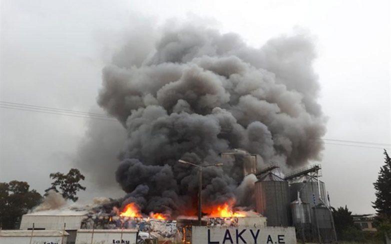 Πυρκαγιά κατέστρεψε ολοσχερώς επιχείρηση παραγωγής ζωοτροφών