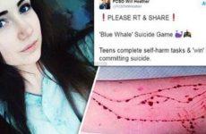 Ενημέρωση πολιτών για το « Blue Whale Challenge »