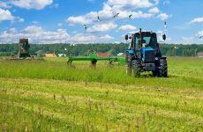 Είδος υπό εξαφάνιση οι νέοι αγρότες