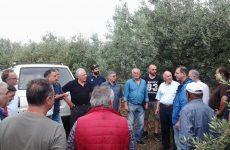 Κλιμάκιο της Περιφέρειας Θεσσαλίας σε περιοχές του Δήμου Τεμπών που επλήγησαν από το χαλάζι