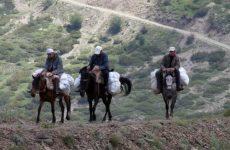 Ο «πόλεμος» του τσαγιού στην ελληνοαλαβανική μεθόριο