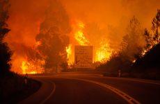 Στους 43 οι νεκροί από τη μεγάλη πυρκαγιά στην Πορτογαλία