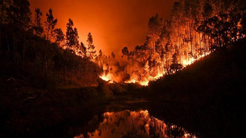 Kάηκαν  30 στρέμματα στα Μελισσάτικα