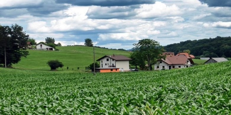 Πολιτική συμφωνία για την προστασία των γεωργών της ΕΕ