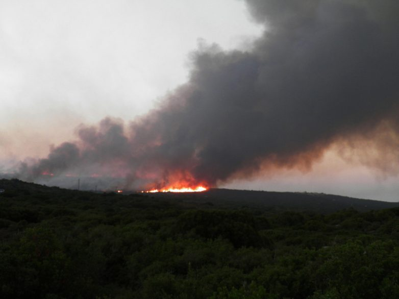 Πυρκαγιά ξέσπασε σε ξερά χόρτα  στο Παλιούρι Βόλου