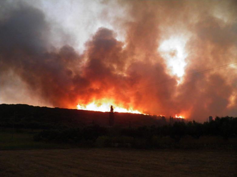 Φωτιά στην Ανάβρα