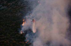 Σε ύφεση η πυρκαγιά στα Καλύβια Αττικής