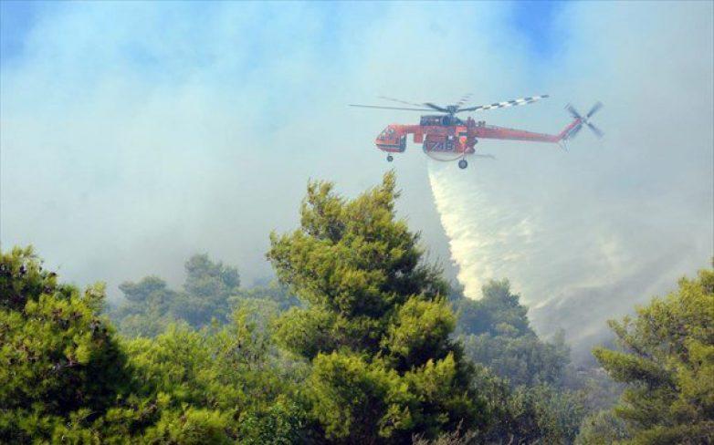 Πυρκαγιά από κεραυνό μέσα στον Εθνικό Δρυμό της Οίτης