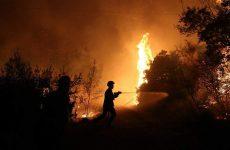 Φωτιά σε δύσβατη περιοχή στα Κανάλια