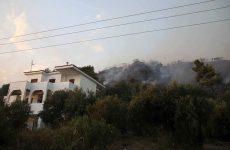 Χαλκιδική: Ολονύχτια επιχείρηση για την κατάσβεση της φωτιάς στην Κασσάνδρα