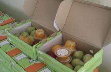 Δωρεάν διανομή γάλακτος, φρούτων και λαχανικών σε μαθητές της ΕΕ