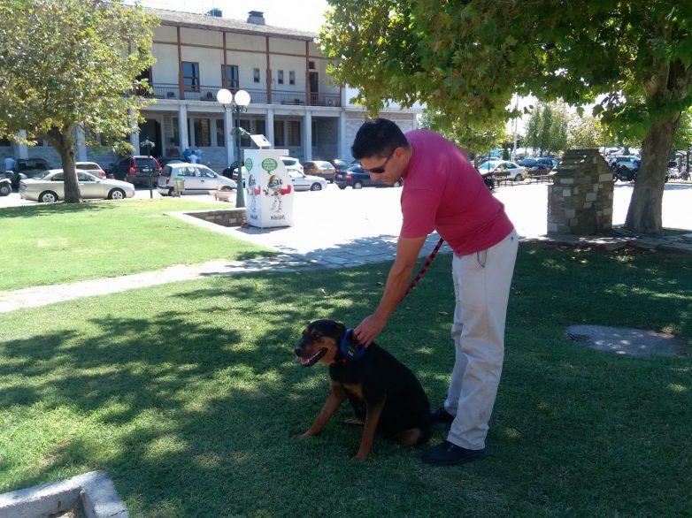 Δωρεάν τοποθέτηση  microchip σε σκύλους ανέργων και ΑμΕΑ