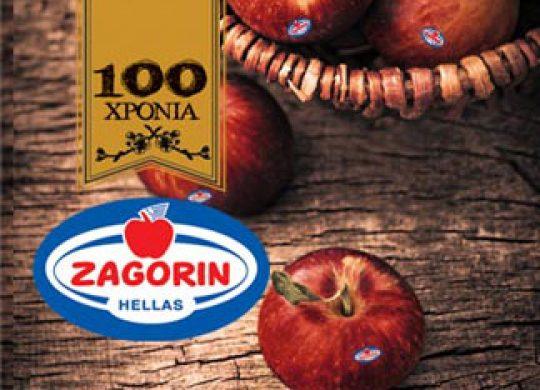 zagorin.gr