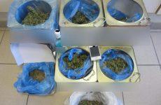 Συνελήφθη στην Αγιά Λάρισας για ποσότητα κάνναβης και αφορολόγητα τσιγάρα