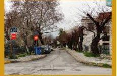 Καμία παρέμβαση στην Καραμπατζάκη κόντρα στο πρόγραμμα LIFE