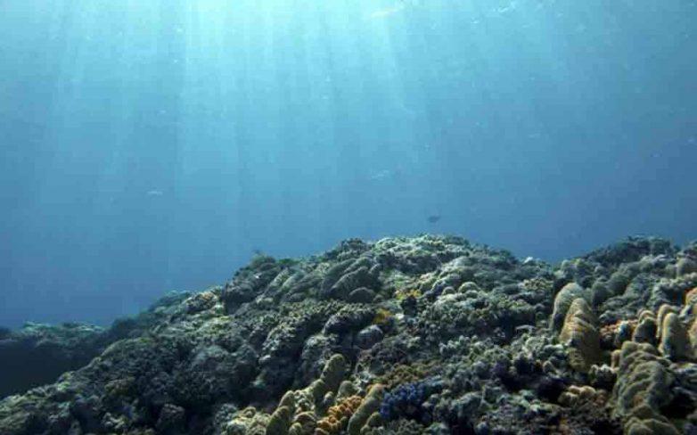 Ενα δισ. ευρώ για τις θάλασσες από ιδιωτικές εταιρείες