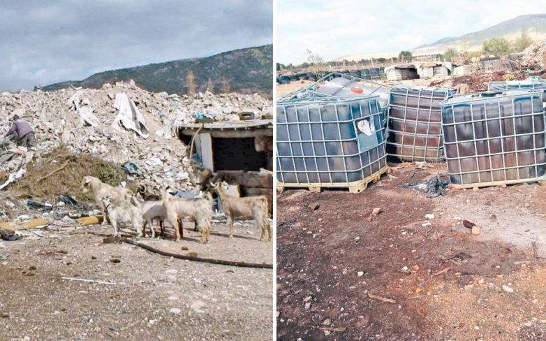 Ασπρόπυργος: Ζώα, άνθρωποι και τοξικά