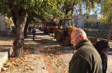 Στο αρχείο η προκαταρκτική για το κόψιμο δέντρων στην Καραμπατζάκη