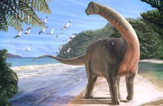 Απολίθωμα δεινόσαυρου που είχε μήκος… λεωφορείου ανακάλυψαν στην Αίγυπτο