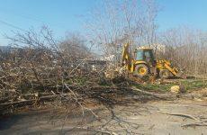 Οικόπεδο-εστία μόλυνσης καθαρίστηκε σήμερα από συνεργεία του Δήμου Βόλου