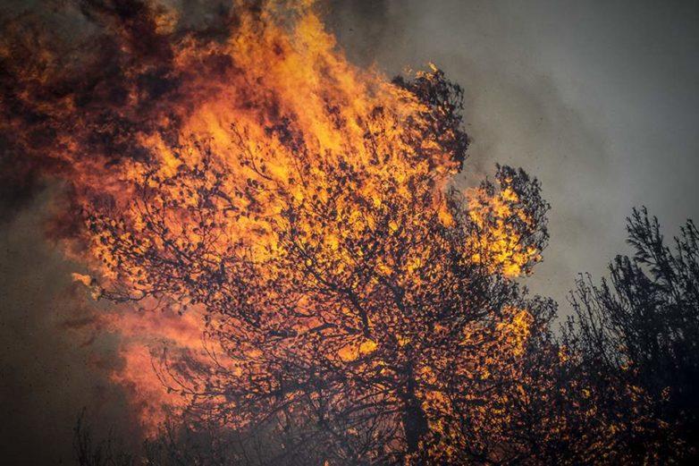 Μαίνεται η πυρκαγιά στην Ηλεία
