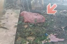 Ανακρίνεται 22χρονη για το νεκρό βρέφος στη Νέα Σμύρνη