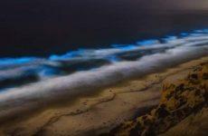Το φαινόμενο που δίνει στις ακτές της Καλιφόρνια μια απόκοσμη μπλε λάμψη