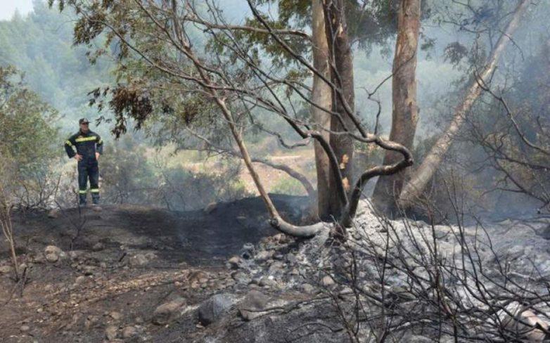Υπό πλήρη έλεγχο η πυρκαγιά στην Κύπρο
