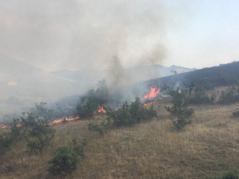 Φωτιές σε Νέα Αγχίαλοκαι Αλμυρό