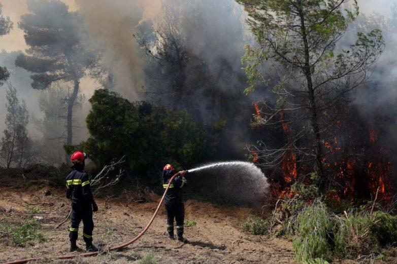Υπό έλεγχο η πυρκαγιά στην Κερασιά