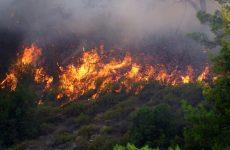 Νέα φωτιά ξέσπασε στην Κρήτη στον Άγιο Σύλλα Μυλοποτάμου