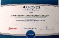 ΖΑGORIN: Διαμάντι της Ελληνικής Οικονομίας