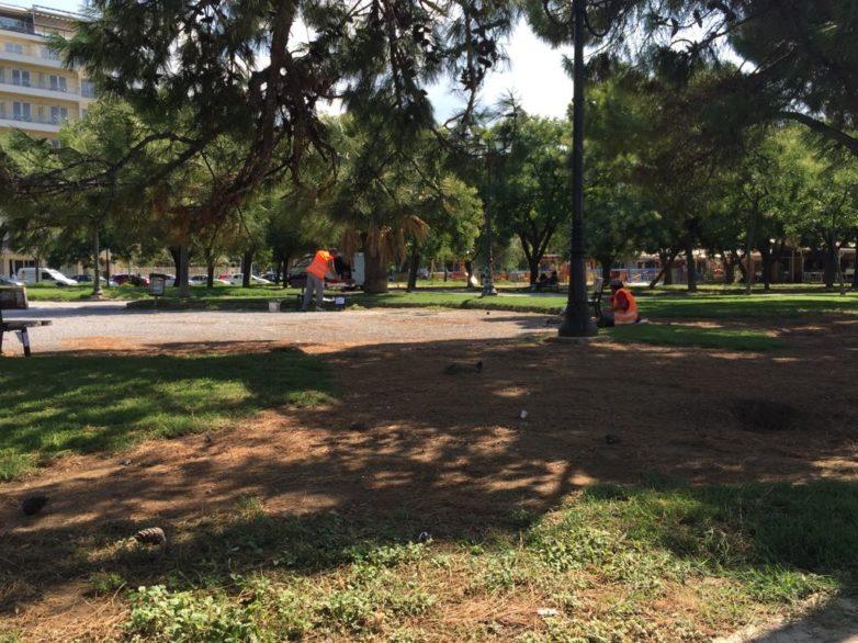 Εργασίες συντήρησης και καλλωπισμού του πάρκου του Αγίου Κωνσταντίνου