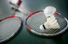Γνωριμία με το badminton στην Αγριά