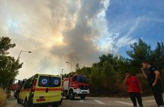 Ευθύνες στη Πυροσβεστική επιρρίπτει η σύμβουλος της Περιφέρειας Αττικής
