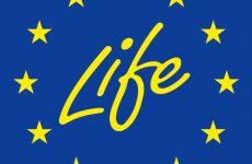 Σ. Φάμελλος: «Έγκριση πιλοτικού ελληνικού έργου LIFE IP για την προσαρμογή στην κλιματική αλλαγή»