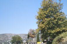 """Αρχές Σεπτεμβρίου η 39η Ανάβαση Πορταριάς """"Δημήτρης Γαρουφαλιάς"""""""