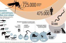 Βαμμένα και στειρωμένα κουνούπια