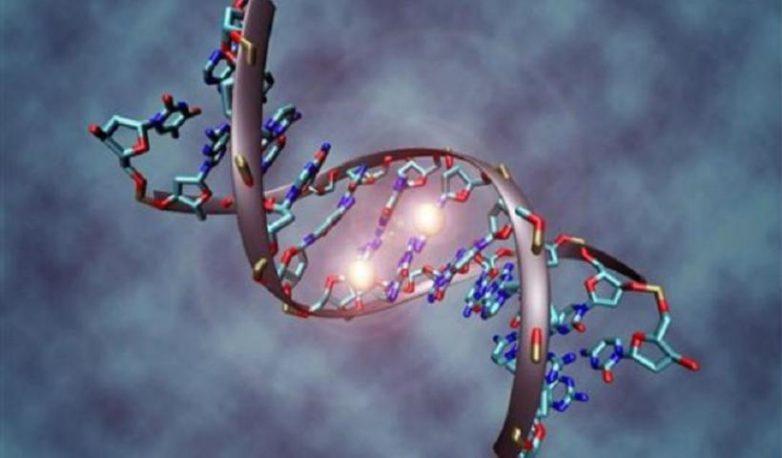 Δημιουργία βάσης δεδομένων για το ανθρώπινο γονιδίωμα
